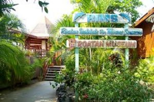 Image result for jenn rims roatan